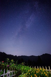 宿泊した民宿からは、天の川が見えるほど星がよく見えました。