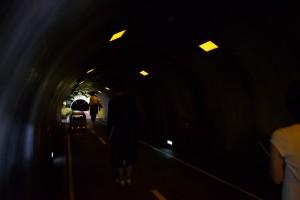 越後妻有里山現代美術館[キナーレ] トンネル